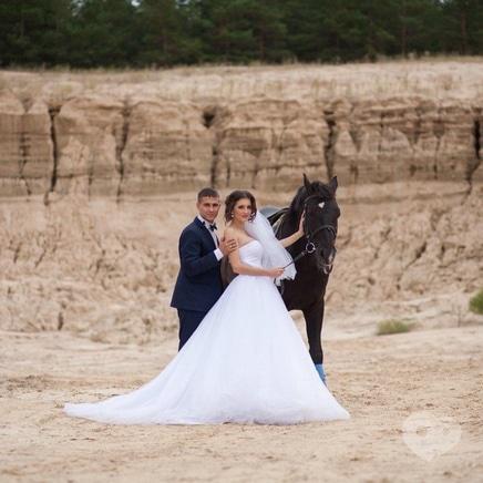 Фото 1 - PEGAS, домашняя конюшня - Фотосессия