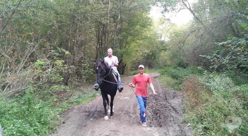 Фото 1 - PEGAS, домашняя конюшня - Конные прогулки по лесу
