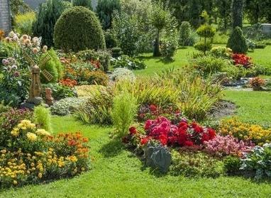 М Центр, мебельный салон - Высадка клумб, цветов, живых изгородей