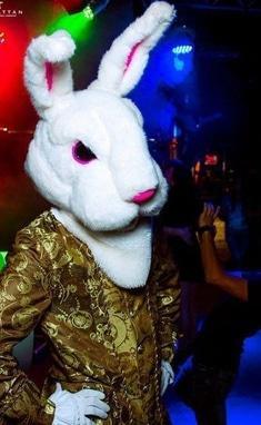 Агентство праздников ИЗУМРУДНЫЙ ГОРОД, организация торжеств - Шоу Белых кроликов (барабанщики)