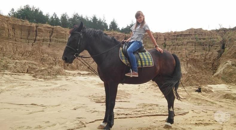 Фото 2 - PEGAS, домашняя конюшня - Прокат на территории