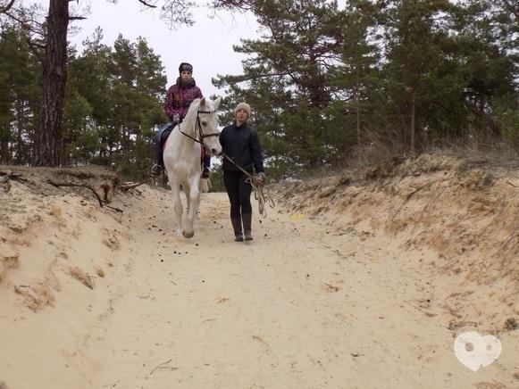 Фото 3 - PEGAS, домашняя конюшня - Прогулка на территории