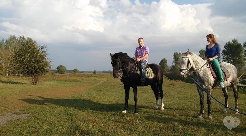 Фото 2 - PEGAS, домашняя конюшня - Конные прогулки по лесу или к реке