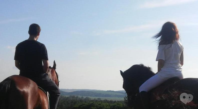 PEGAS, Домашняя конюшня - Прогулка с пикником