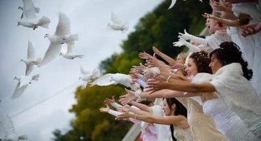 Эдем, агентство организации праздников - Выпускание живых голубей