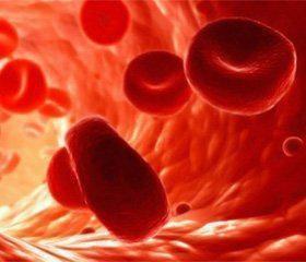 Лікар Здоров'я, центр сімейної медицини - Досліждення системи гемостазу