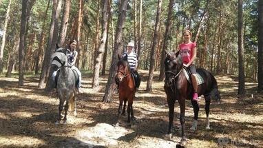 PEGAS, домашняя конюшня - Прогулка по лесу для всадника с опытом (предложение для одного человека)