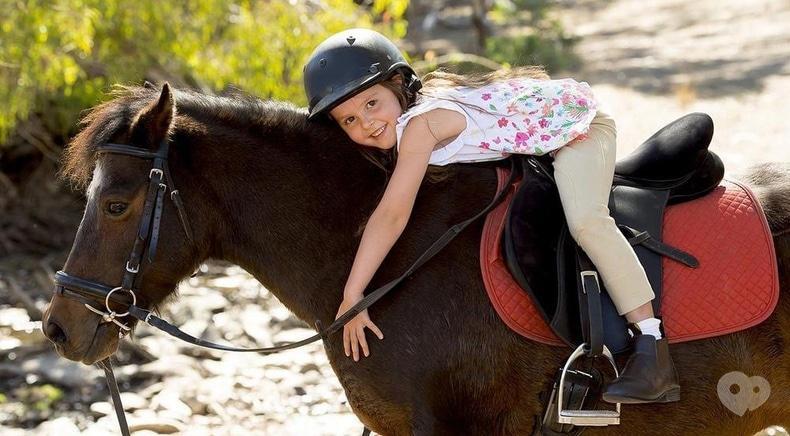 Сван, кінно-спортивний клуб - Навчання верхової їзди для дорослих і дітей
