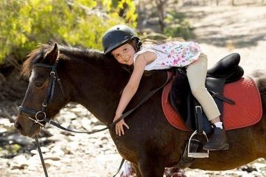 Сван, конно-спортивный клуб - Обучение верховой езде для взрослых и детей