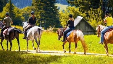 Сван, конно-спортивный клуб - Прогулка в лес верхом на лошади