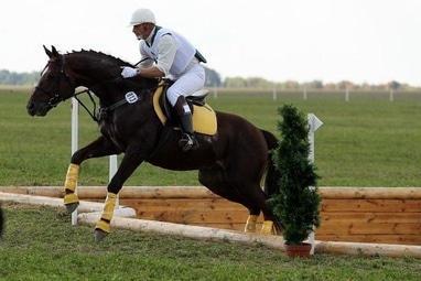 Сван, конно-спортивный клуб - Индивидуальные тренировки по различным дисциплинам конного спорта