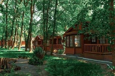 Selena Family Resort, Готельно-ресторанний комплекс - Бунгало Executive з видом на парк