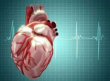 Ирмед, Медицинский центр - Консультация врача кардиолога