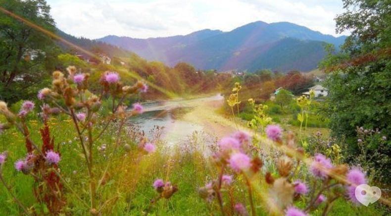Мандрівник, туристическая компания - Сыро-Винный тур Закарпатьем