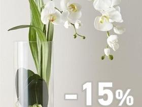 """-15 % на все орхидеи от Цветочного дома """"Букет"""""""