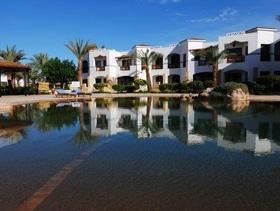 """Тур в Египет, Шарм Эль Шейх Otium Hotel Amphoras Sharm 5* от """"Манго плюс"""""""