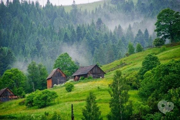 """Акція – Туристична поїздка в Карпати на тиждень від """"НАМІ"""""""