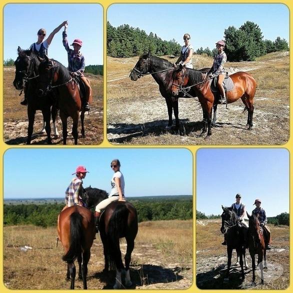 Акция - Экспресс курс – Чудо день с лошадьми, только весной