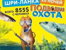 "Подводная охота на Шри-Ланке от ""Питбуль-Тур"""